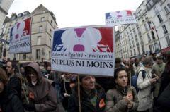 matrimoni gay francia 02