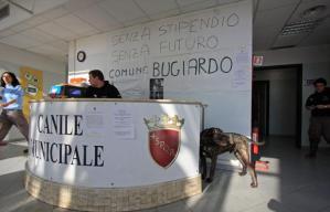 Roma 25 novembre 2009 canile municipale di via della magliana occupato dai dipendenti - canile municipale occupato - fotografo: benvegnu'-guaitoli-lannutti